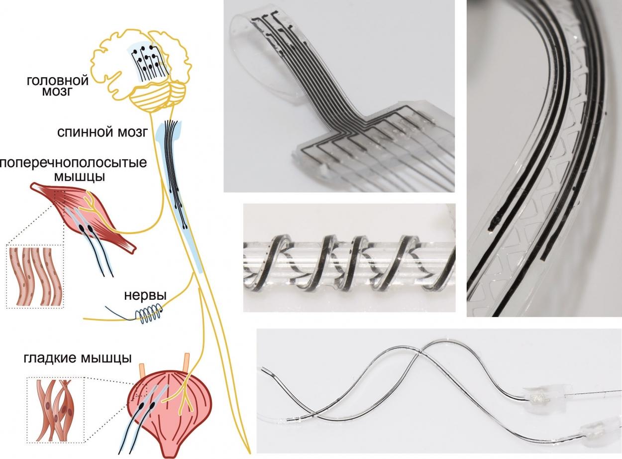 Применение технологии гибридной 3D-печати NeuroPrint