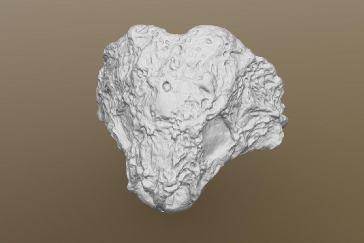 3D-модель черепа скутозавра (Scutosaurus karpinskii)