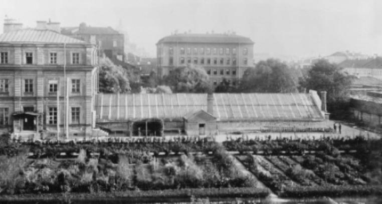 Кафедра ботаники с оранжереями, начало XX века