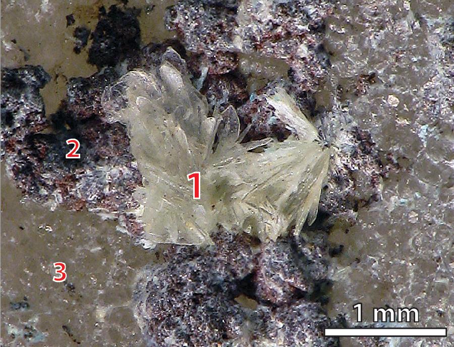 1 – батагаит, 2 – самородная медь, 3 – фторапатит