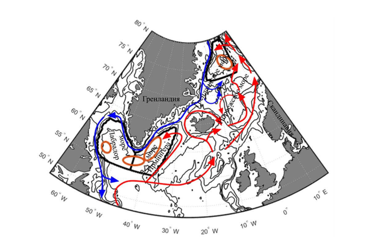 Потоки теплых вод на север и холодных поверхностных вод на юг. Охровыми эллипсами показаны районы, где наиболее часто формируются глубинные воды глобального океанического конвейера
