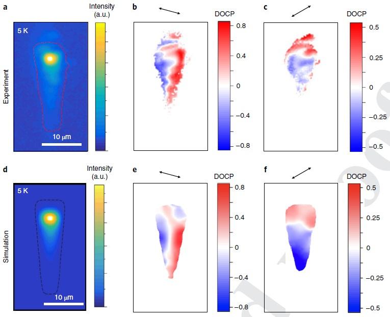 График, показывающий пространственное распределение поляризации света. Nature Nanotechnology, 2019